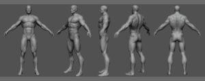Lista de cuerpos mesh masculinos con precios y enlace directo al punto exacto de compra en Second Life.